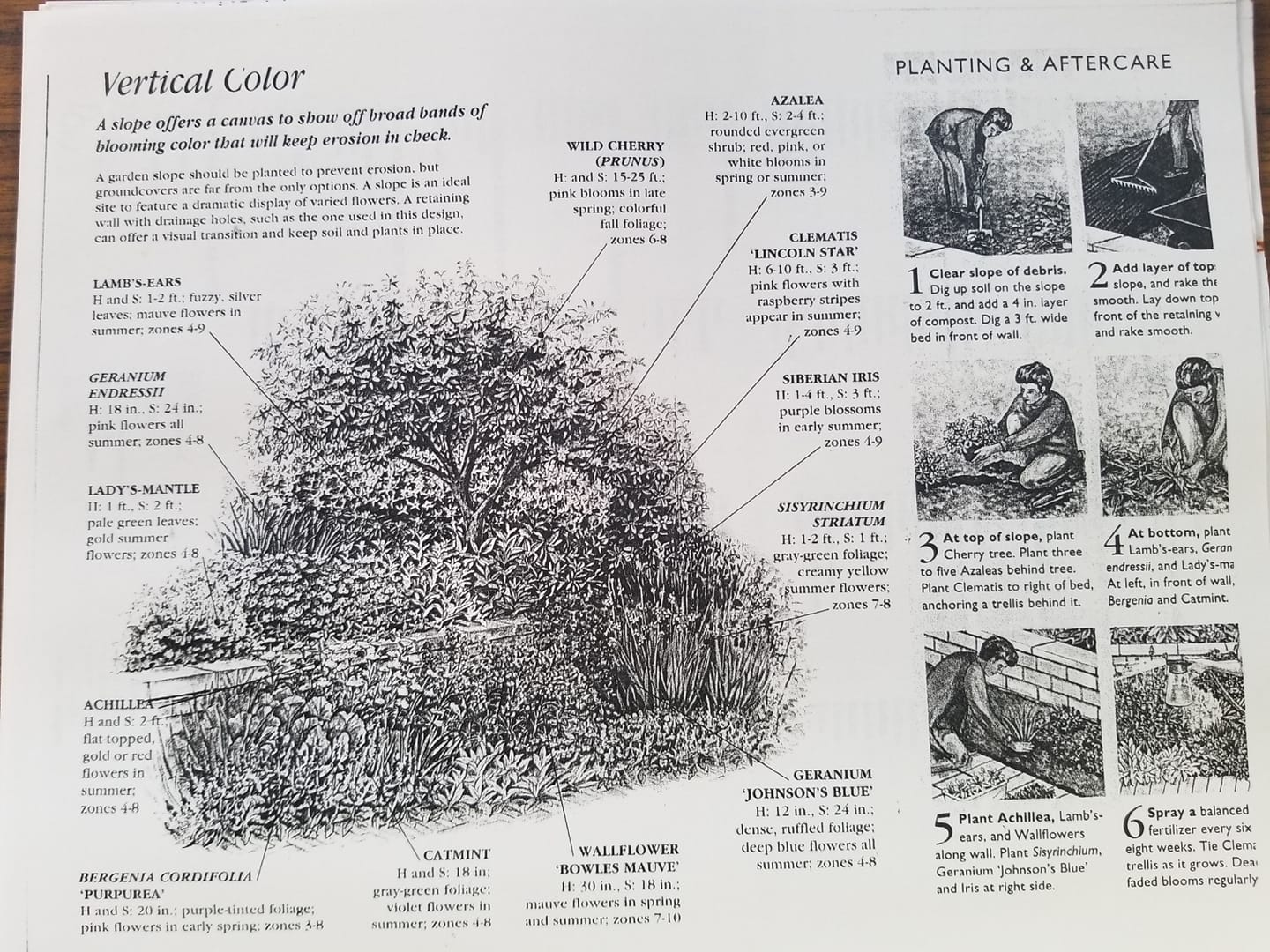Care Instructions for plants